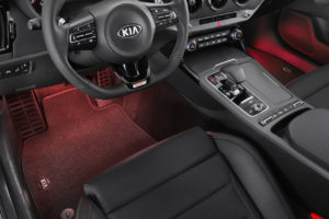 66650ADE20_IM_LED_footwell_illumination_first_row_red_1
